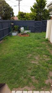 Grass before photo